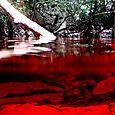 15_inmersion_afluente_del_rio_negro_rdrt