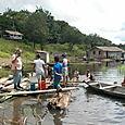 Comunitat_riu_beruri_riu_purus_rd