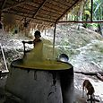 Caboclo preparando harina Mandioca