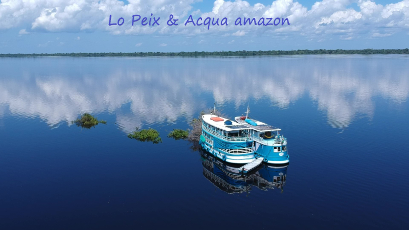 Lo Peix  & Acqua Amazon azul y branco